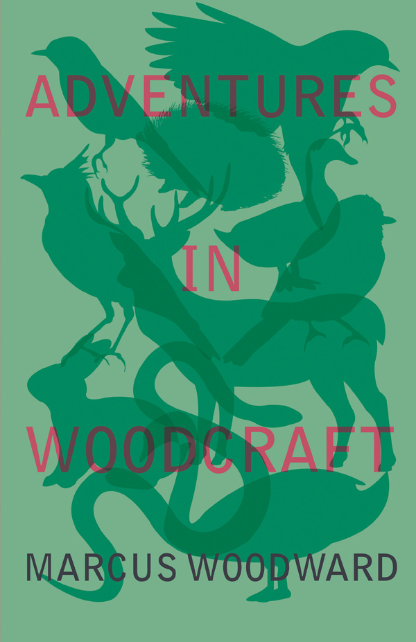 9781528701808 - Adventures in Woodcraft - Marcus Woodward