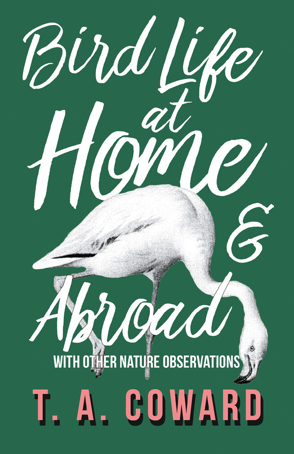 9781528701747 - Bird Life at Home and Abroad - T. A. Coward