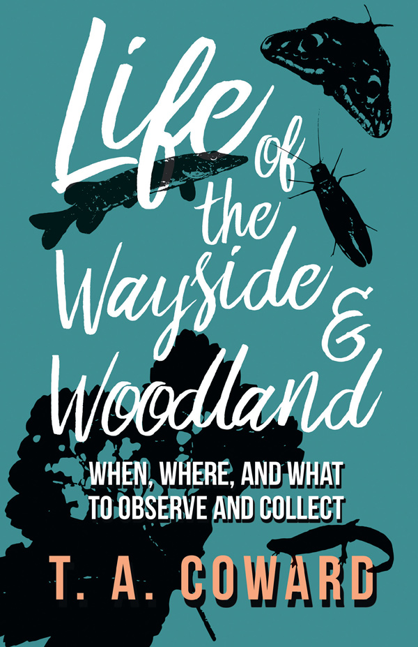 9781528701648 - Life of the Wayside and Woodland - T. A. Coward