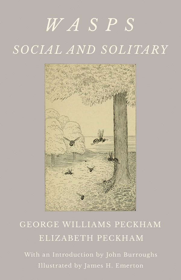 9781528710022 - Wasps - Social and Solitary - George Williams Peckham